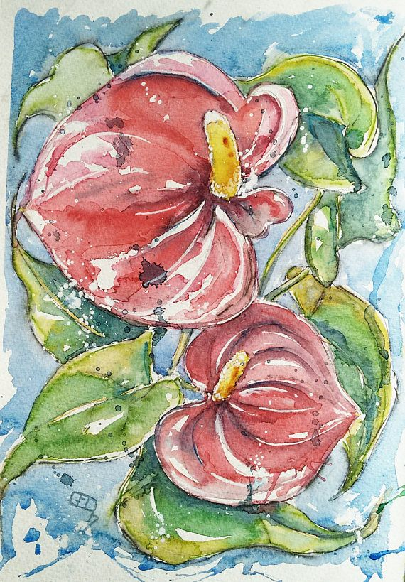 Original Anthurium Painting Flower Art Watercolour Of Red Etsy Flower Art Flower Painting Painting