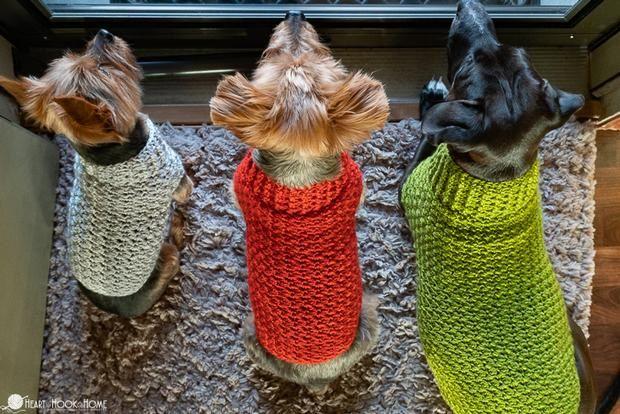 Dandy Dog Sweater