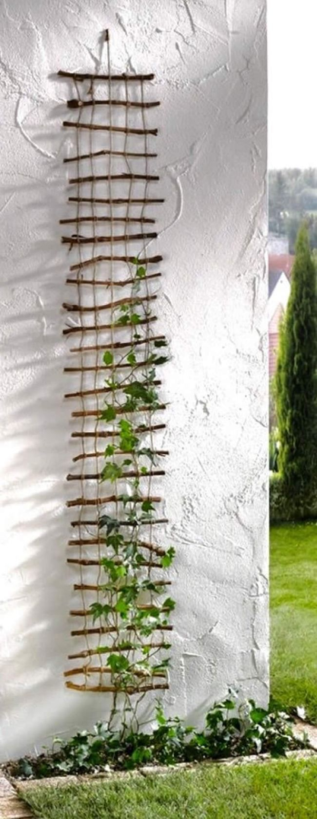 Wunderschöne DIY-Gitter zum Klettern von Pflanzen