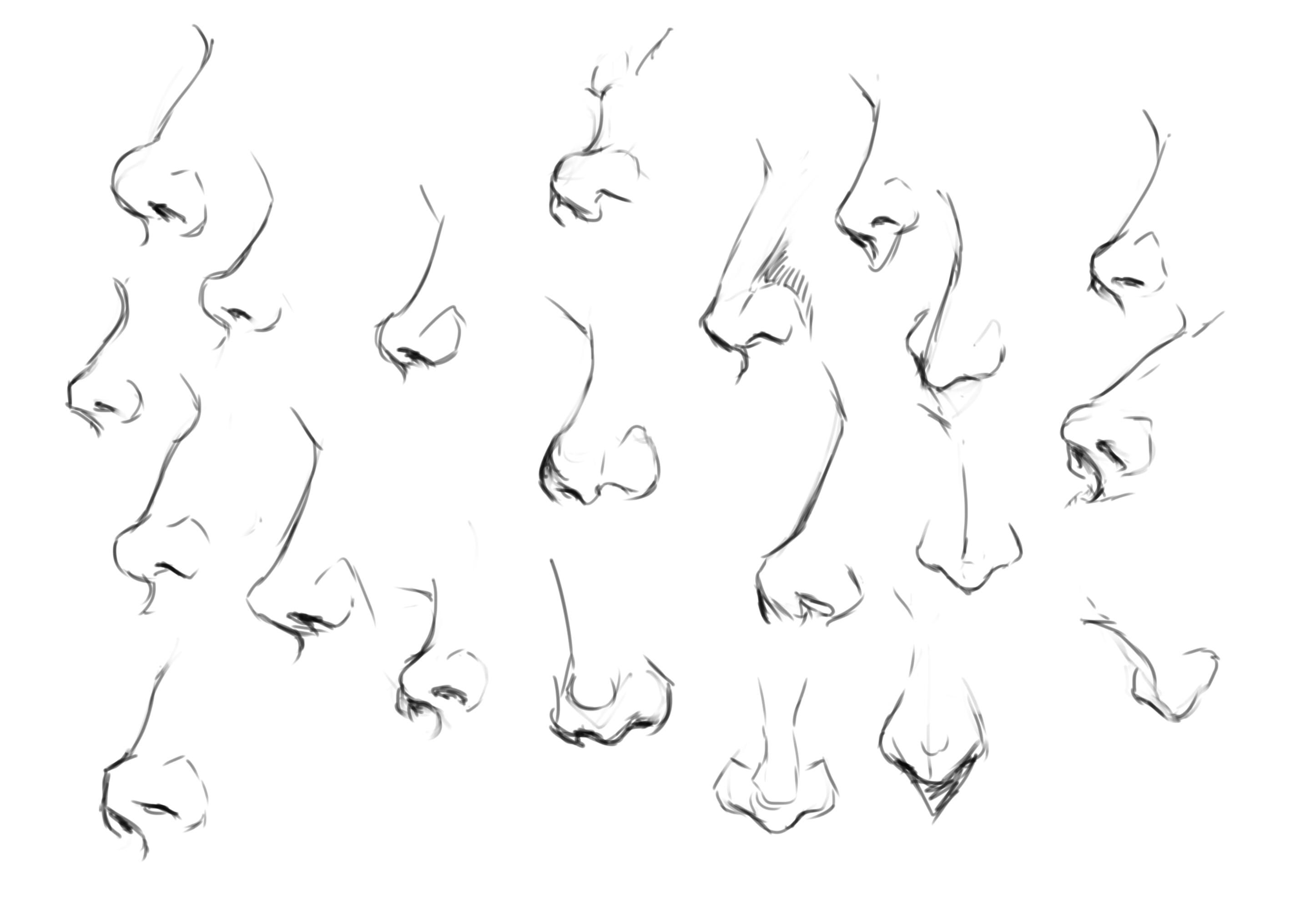 Practice Noses, Figures, and Motivation Nose drawing