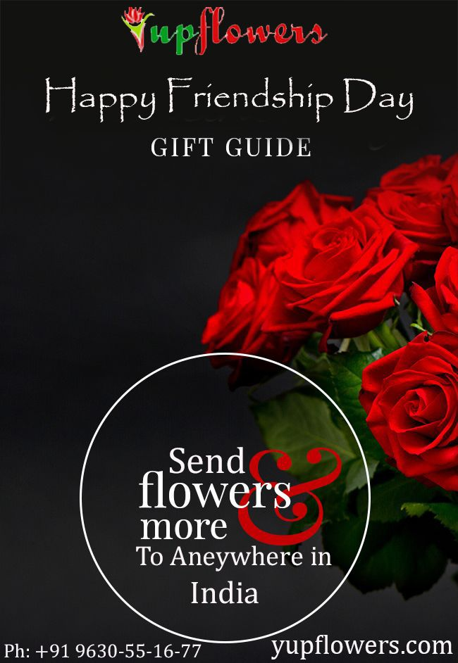 buy fresh and roses and beautiful bouquet for friendship day, Ideas