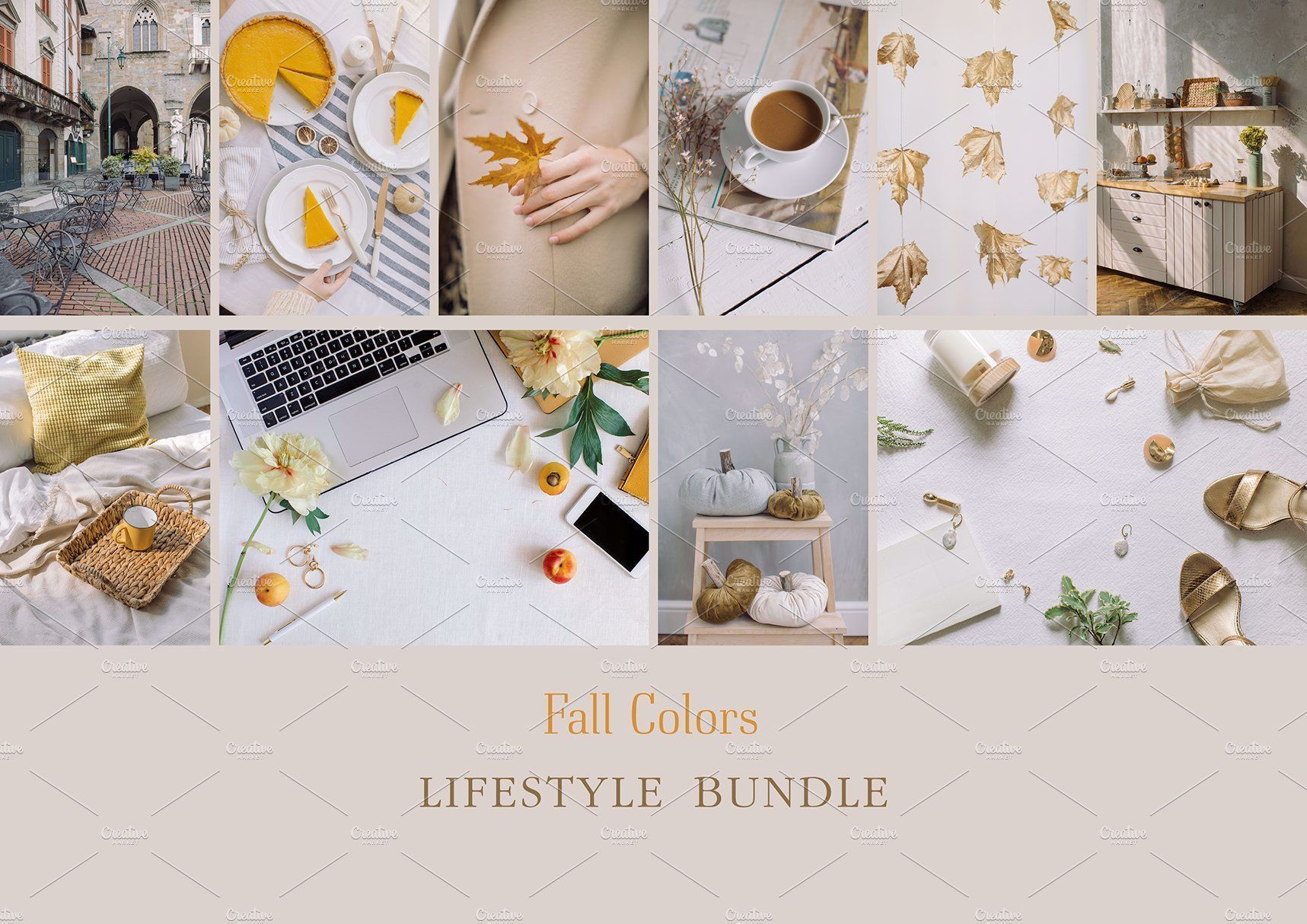 Fall colors  Stock photography bundle 15 styled stock photos Gorgeous photos for bloggers calligraphers florists websites magazines business owners wedding professionals...
