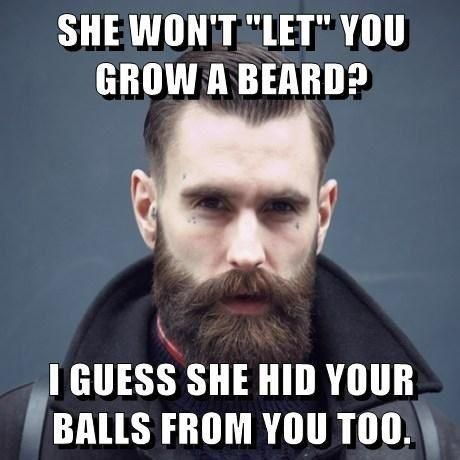 4de2f8ae3a8a8b9f03a57fd2b0fd8df9 top 60 best funny beard memes bearded humor and quotes beard humor