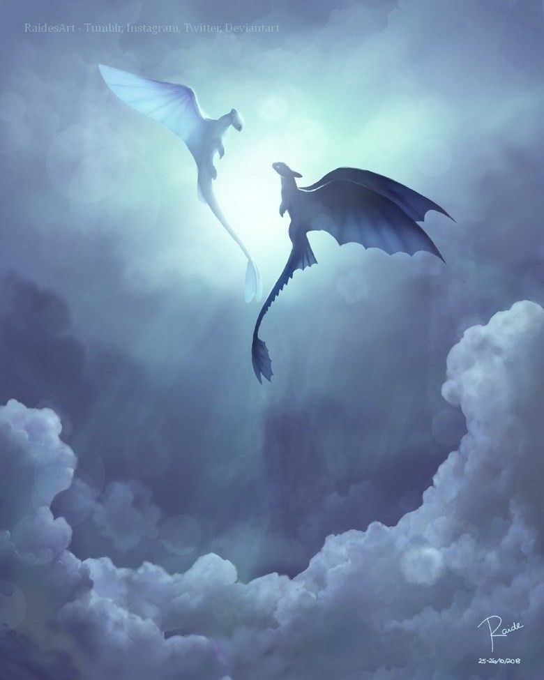This Is Beautiful Toothless And The Light Fury How Train Your Dragon How To Train Your Dragon How To Train Dragon