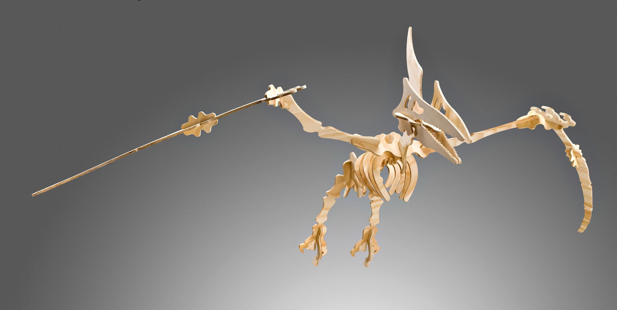 Pterodactyl 3d Dinosaur Puzzle In