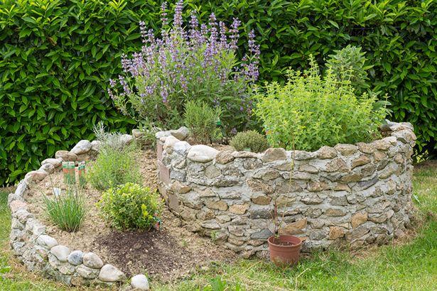 Realizzare Un Aiuola Originale A Forma Di Spirale 20 Idee Video Tutorial Orto Da Cortile Giardino Roccioso Idee Di Giardinaggio