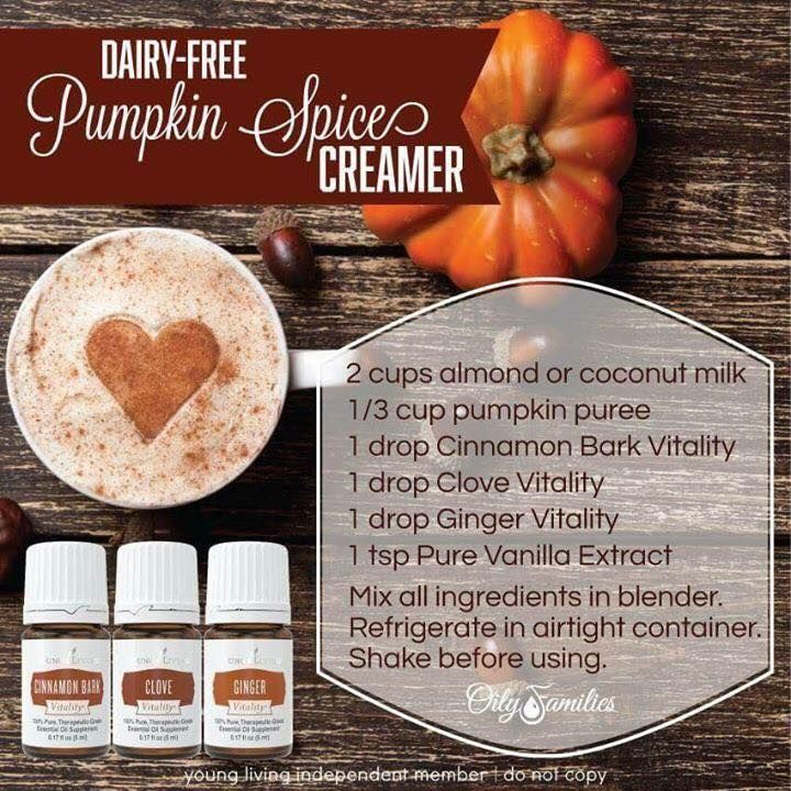 young living essential oils pumpkin spice creamer recipe oils