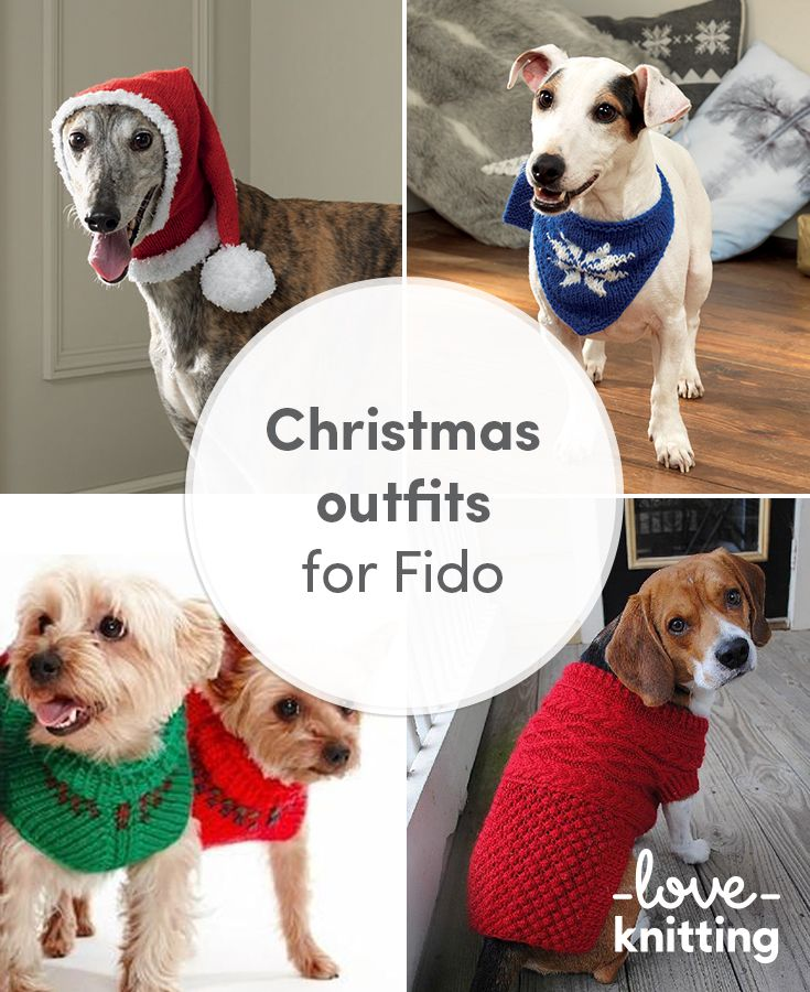 Christmas outfits for Fido | mscotas | Pinterest