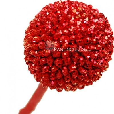 Craspedia Billy Buttons Red Billy Buttons Red Wedding Flowers Craspedia