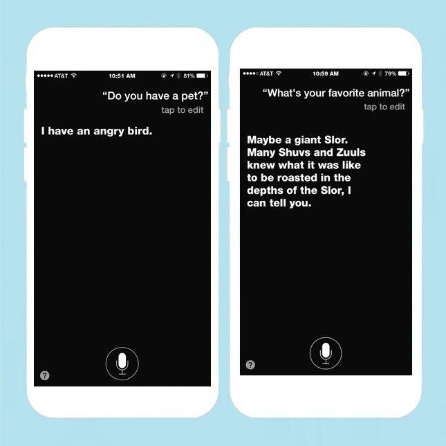 4de65d006eabd483bc9bf2580804c081 - How Do I Get Siri To Say What I Type