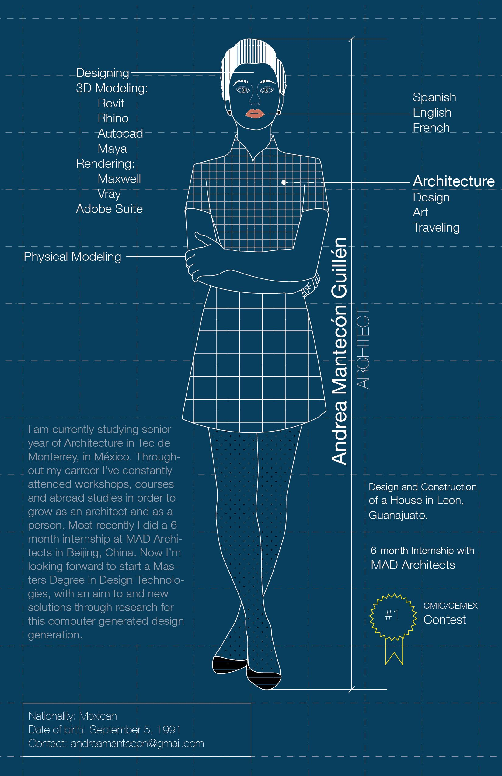 an infographic about myself   architect  infographic  cv