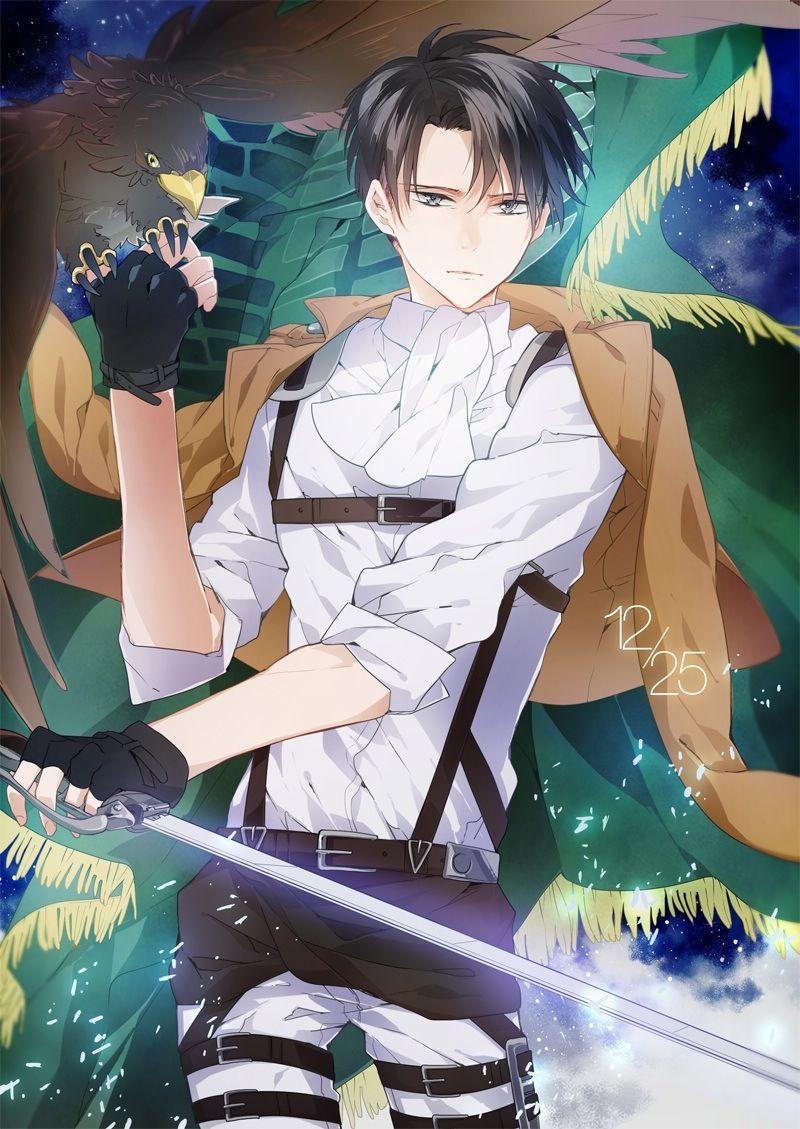 Rivaille (Levi) Shingeki no Kyojin anime Shingeki no
