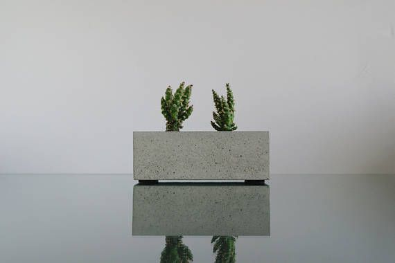 Beton übertopf beton übertopf für sukkulenten und kakteen home dekor moderne