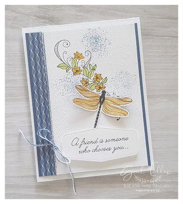 Dragonfly Garden Cards