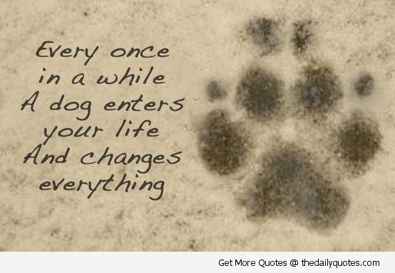 Dog Sayings And Quotes Motivational Love Life Quotes Sayings Poems