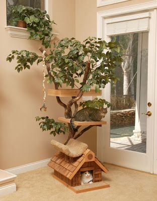 Cat Tree House: This cool cat house is hand crafted and comes with a real tree.