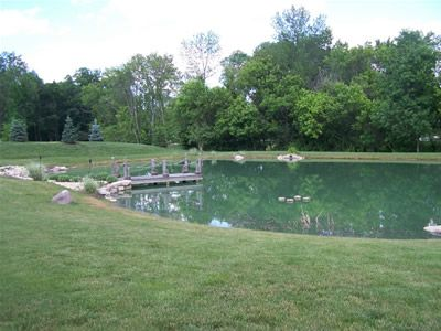 Fishing/swimming pond