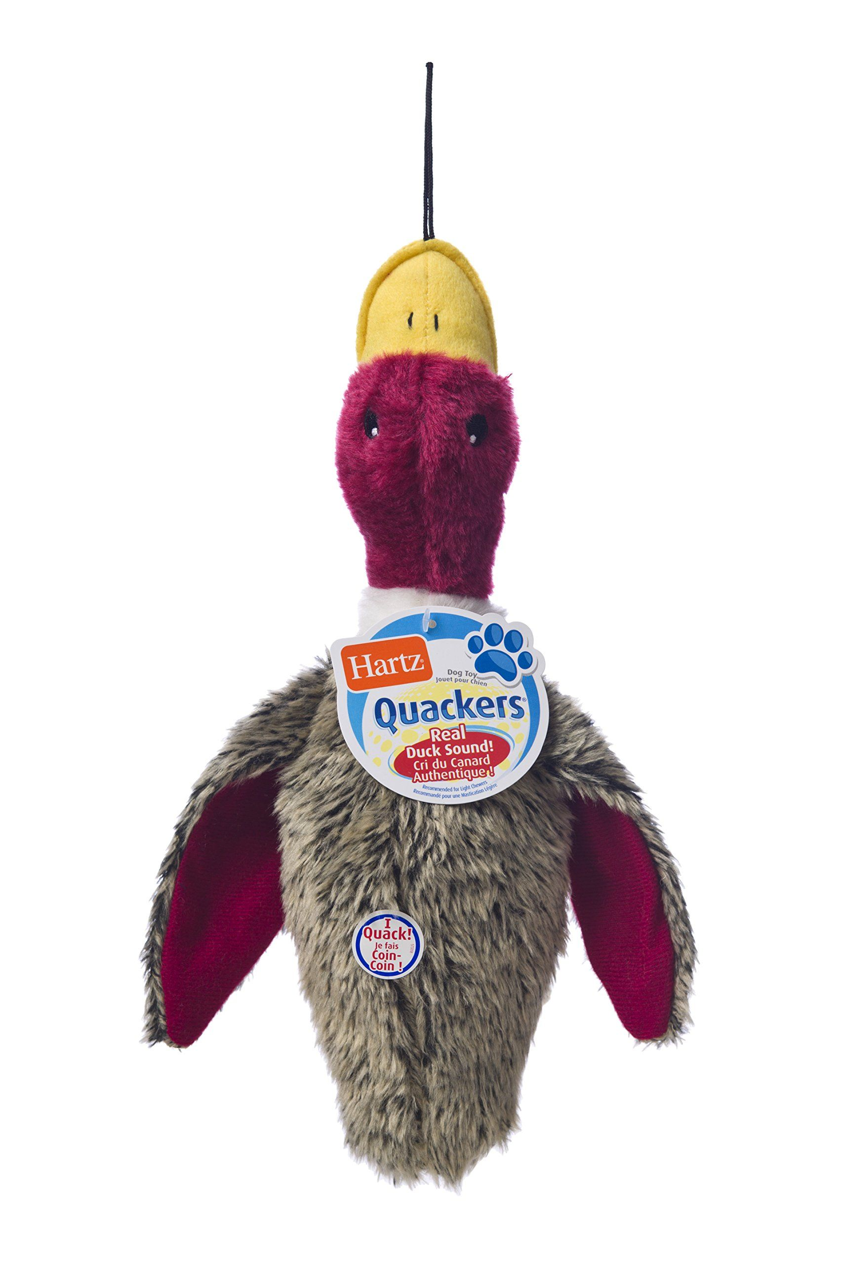 Hartz Quackers Plush Duck Dog Toy Colors Styles Vary Continue