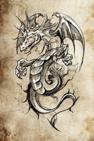 Photo of Dragon Tattoo Lizenzfreie Bilder Und Fotos Kaufen