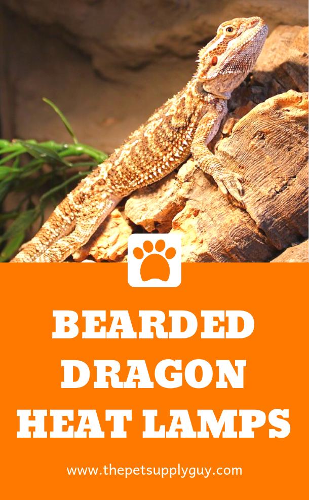 Best Basking Light For Bearded Dragons Complete Guide Bearded Dragon Heat Lamp Reptile Heat Lamp Bearded Dragon