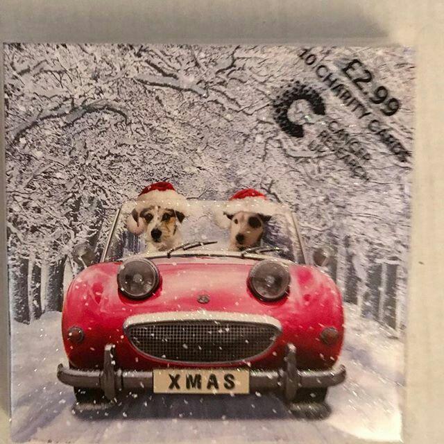 Merry Christmas To Frogeye Bugeye Lovers