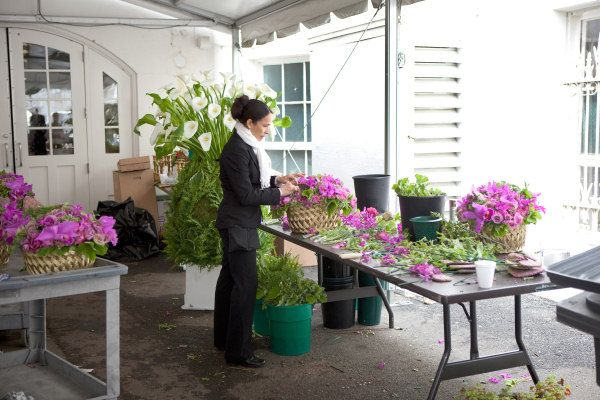 Pin by janet erdman on the white house pinterest the white house florist at work mightylinksfo
