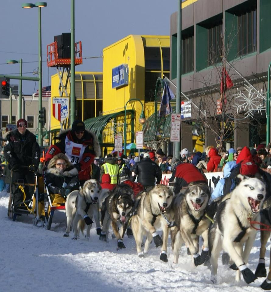 Anchorage - Starting line for the Iditirod