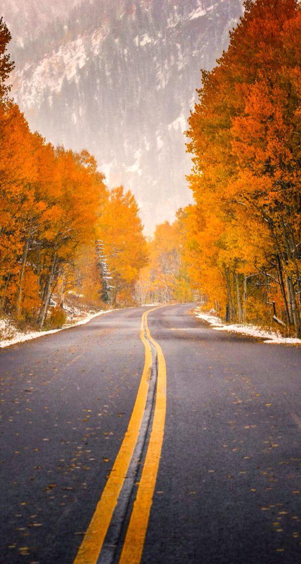 Autumn Street Iphone Wallpaper Beautiful Roads Autumn Forest Nature