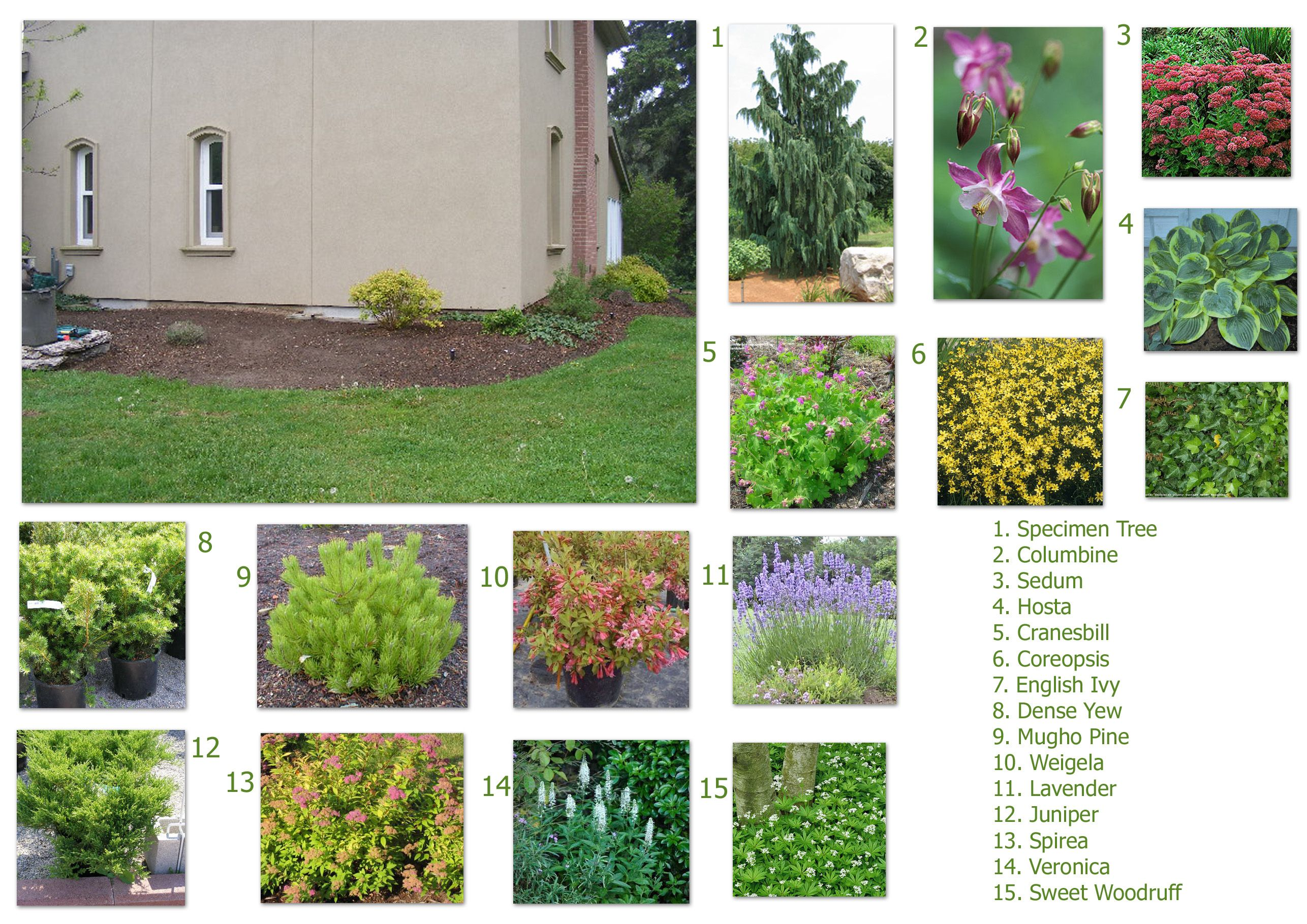 Landscaping Design Ideas For Front Of House landscaping with lavender Landscape Design Companies In Columbia Sc