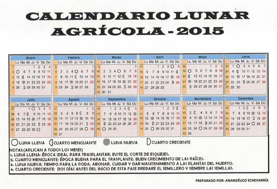 Calendario Huerto Casero Periodic Table