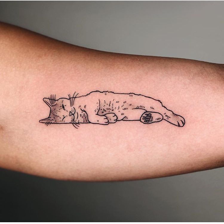 Photo of 50 Best Cat Tattoo Designs For Men And Women #cattattoos #tattoos #tattooideas #cat – Lovely Animals World