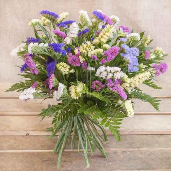 Resultado de imagen de comprar flores secas alicante Flori - flores secas