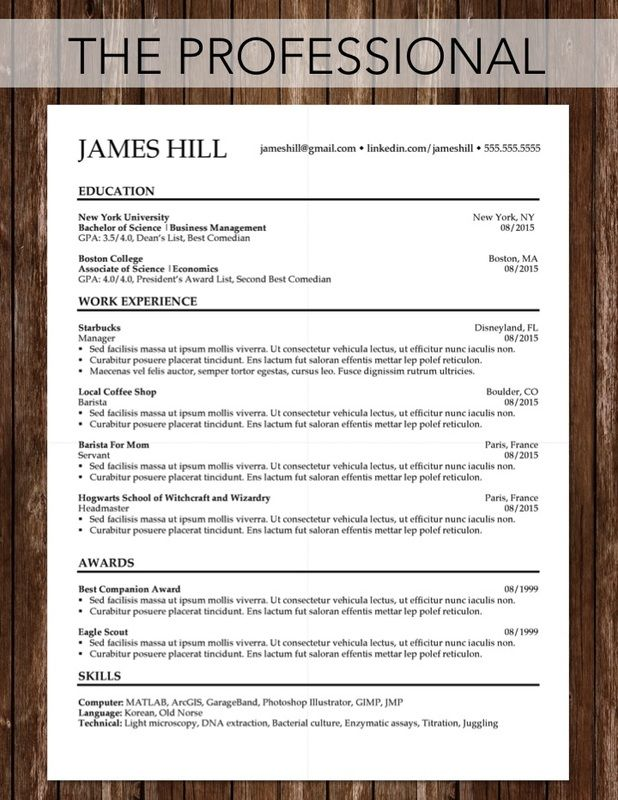 College Resume Template Templates Design Tips Sample