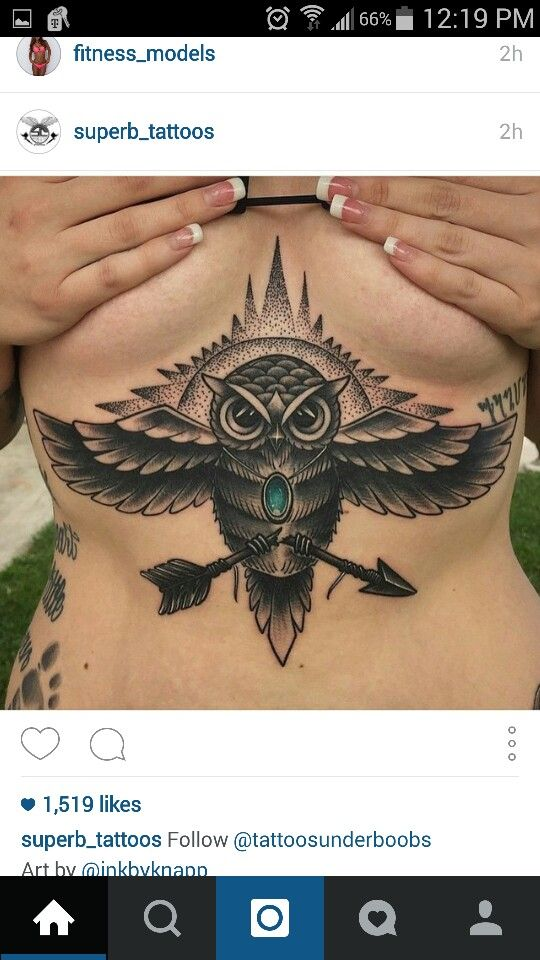 Love the idea of the owl breaking an arrow but I would want
