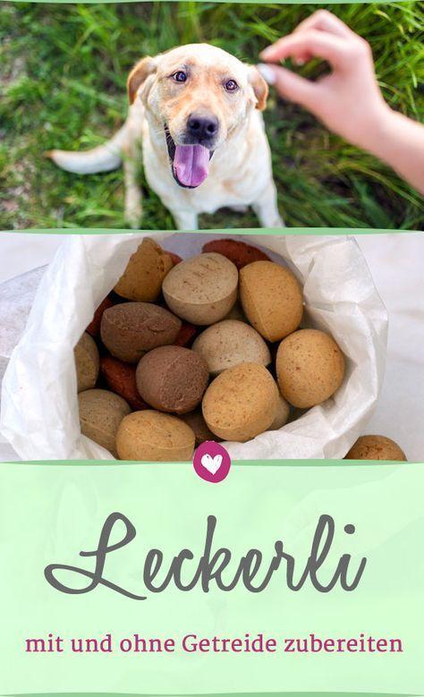 Hundekekse mit diesen Rezepten einfach selber backen