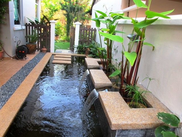 Fish pond design ideas in 640 480 water for Contemporary pond design