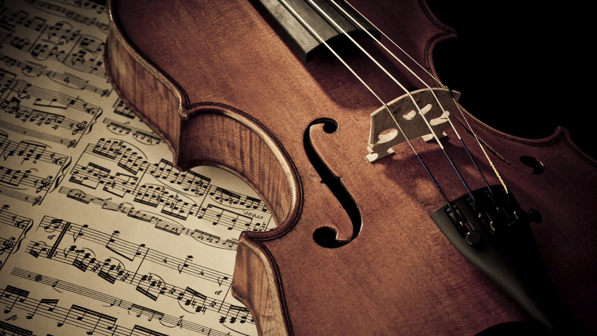 Imgur Com Violin Classical Music Music Photo