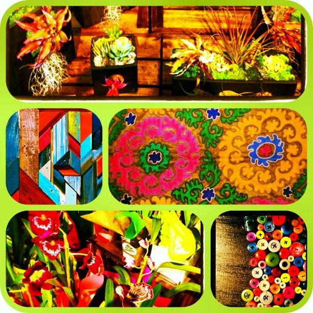 Favorite things in Life - @honorooroo- #webstagram Succulents, Suzani's,Orchids, Funky Wood and Colored Buttons