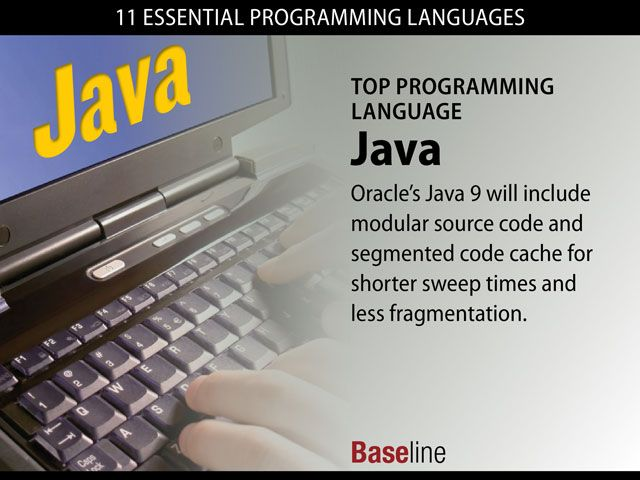 11 Essential Programming Languages Programming Languages Top Programming Languages Computer Programming