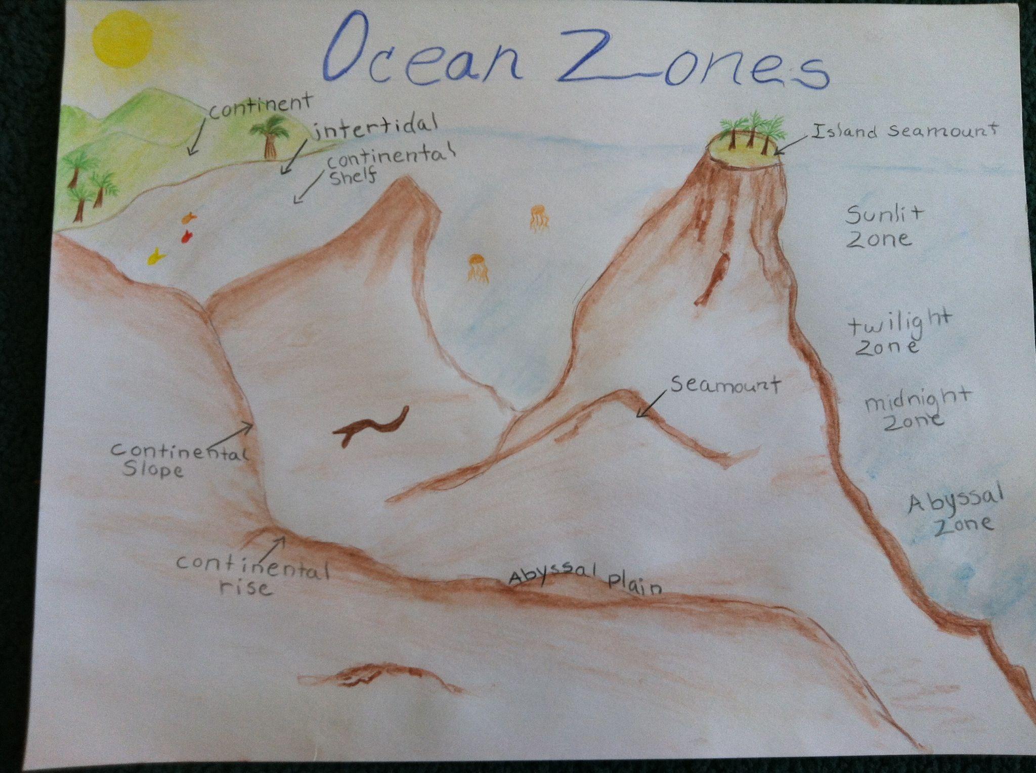 Waldorf 6th Grade Geography Biomes Ocean Zones Main Lesson Book