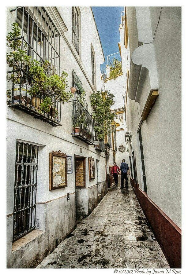 Calle del  Agua del Barrio de Santa Cruz SEVILLA