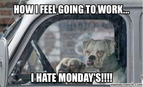 Funny Memes For Monday : How i feel going to work i hate mondays monday monday memes i