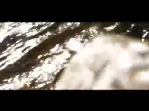 LANCIA DELTA INTEGRALE- TOP GEAR