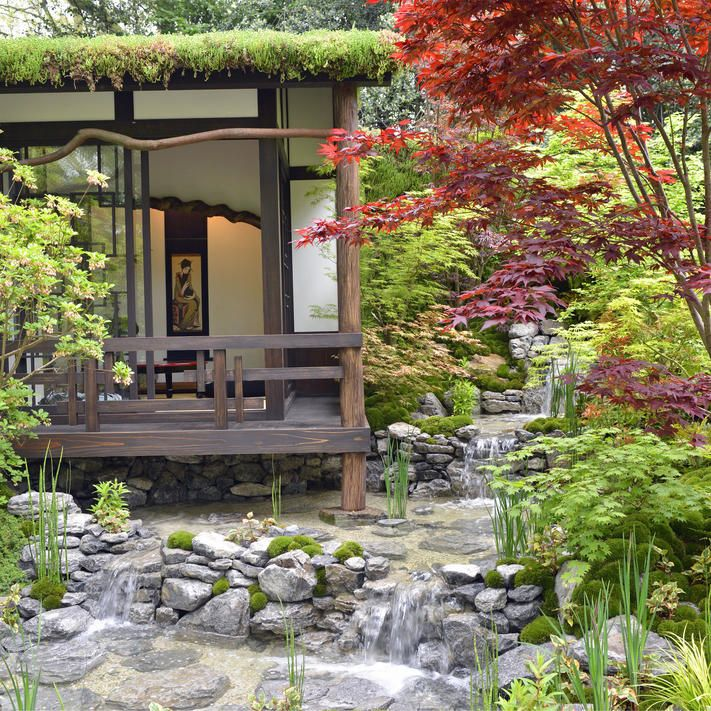 japanischer garten pinterest japanische garten planen. Black Bedroom Furniture Sets. Home Design Ideas