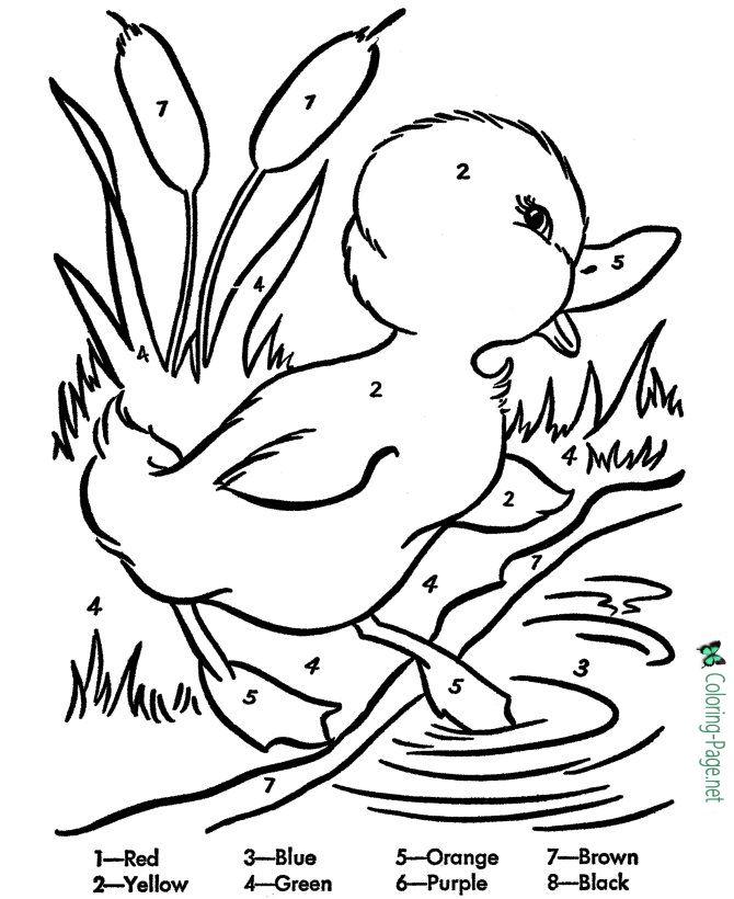 Perfecto Diligencia Colorear Páginas Para Niños Patrón - Dibujos ...