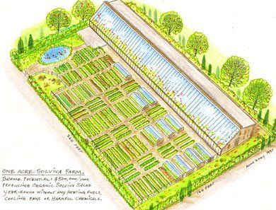 Homesteading Diy Or Die Survival In A Post Apocalyptic World Farm Layout Greenhouse Farming Homestead Layout