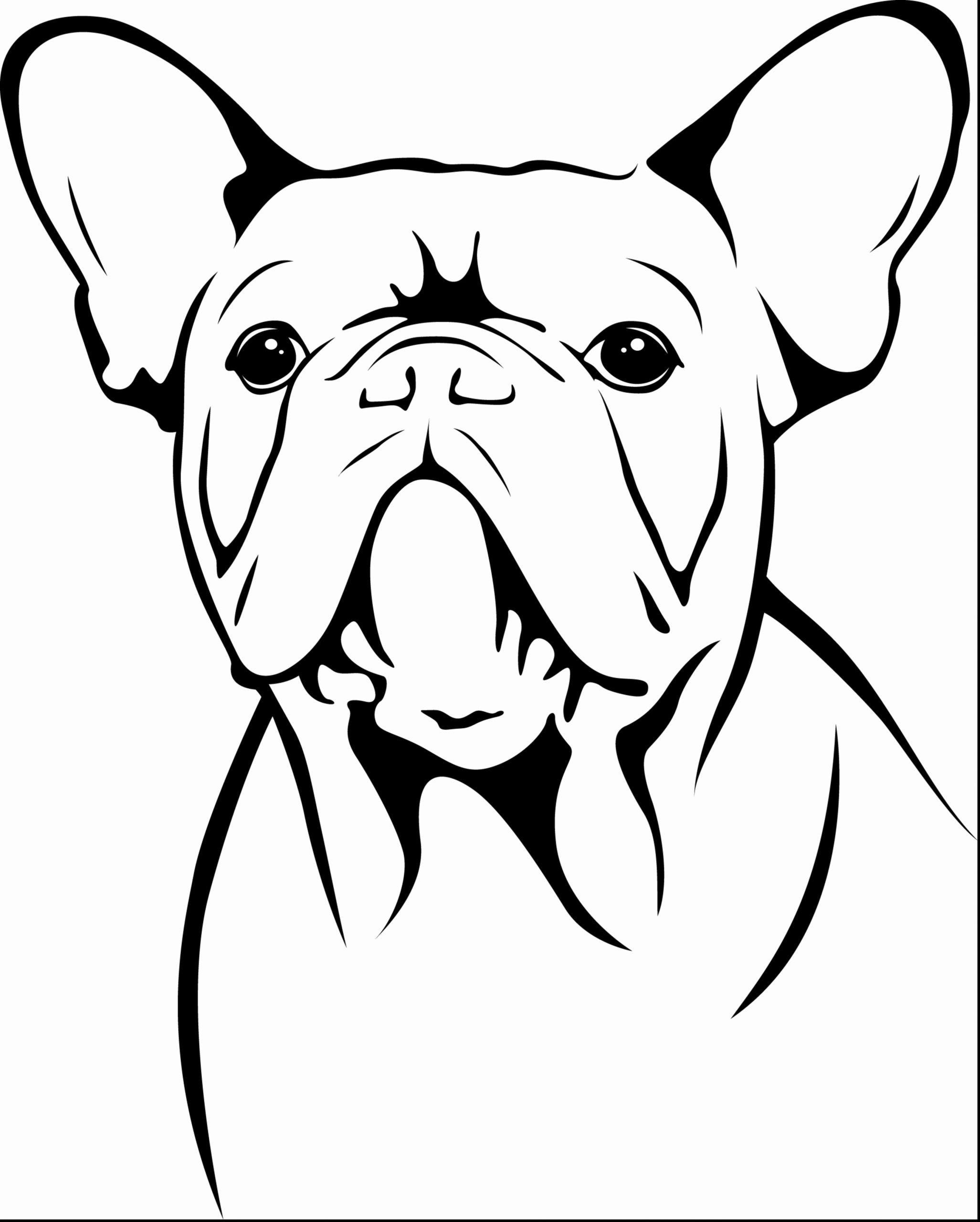 Bull Dog Coloring Page Beautiful American Bulldog Drawing