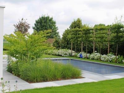 Project rvc hombeek verde tuinarchitectuur projecten op maat