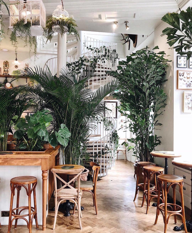 Cocktails + plants + Instagrammable interiors = millennial