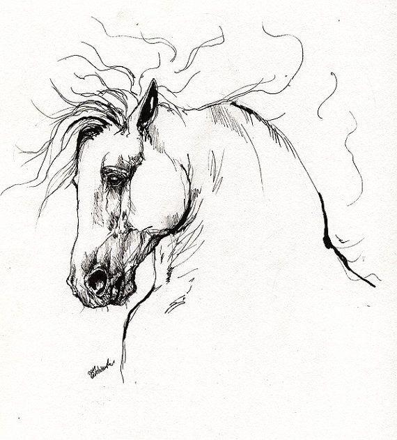 Nº 5 Dibujo De Un Caballo Simplificado Y Estilizado Mediante Trazos Lineales A Rotulador De Punta Fina Arte De Acuarela Cuadros De Caballos Arte